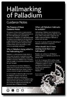 Palladium Guidance Notes